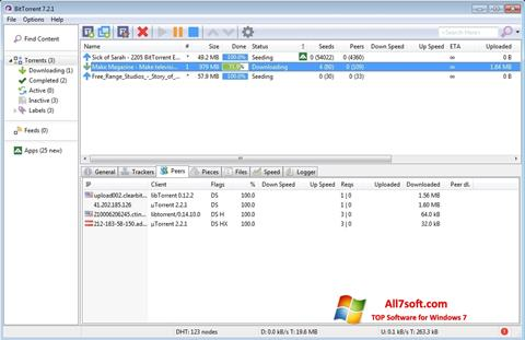 Screenshot BitTorrent Windows 7