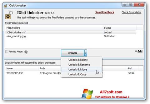 Screenshot IObit Unlocker Windows 7